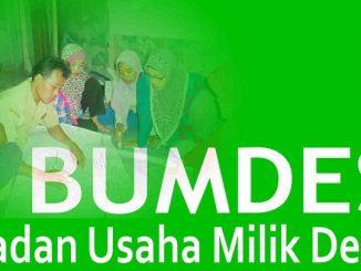 Pelatihan Pengembangan Badan Usaha Milik Desa (BUMDES)