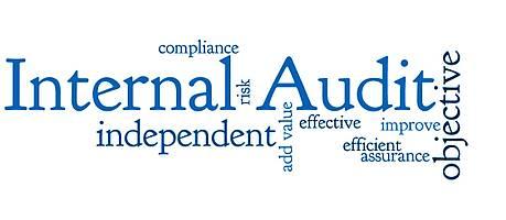 AUDIT INTERNAL OHSAS